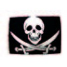 Piratenvlag voor boot